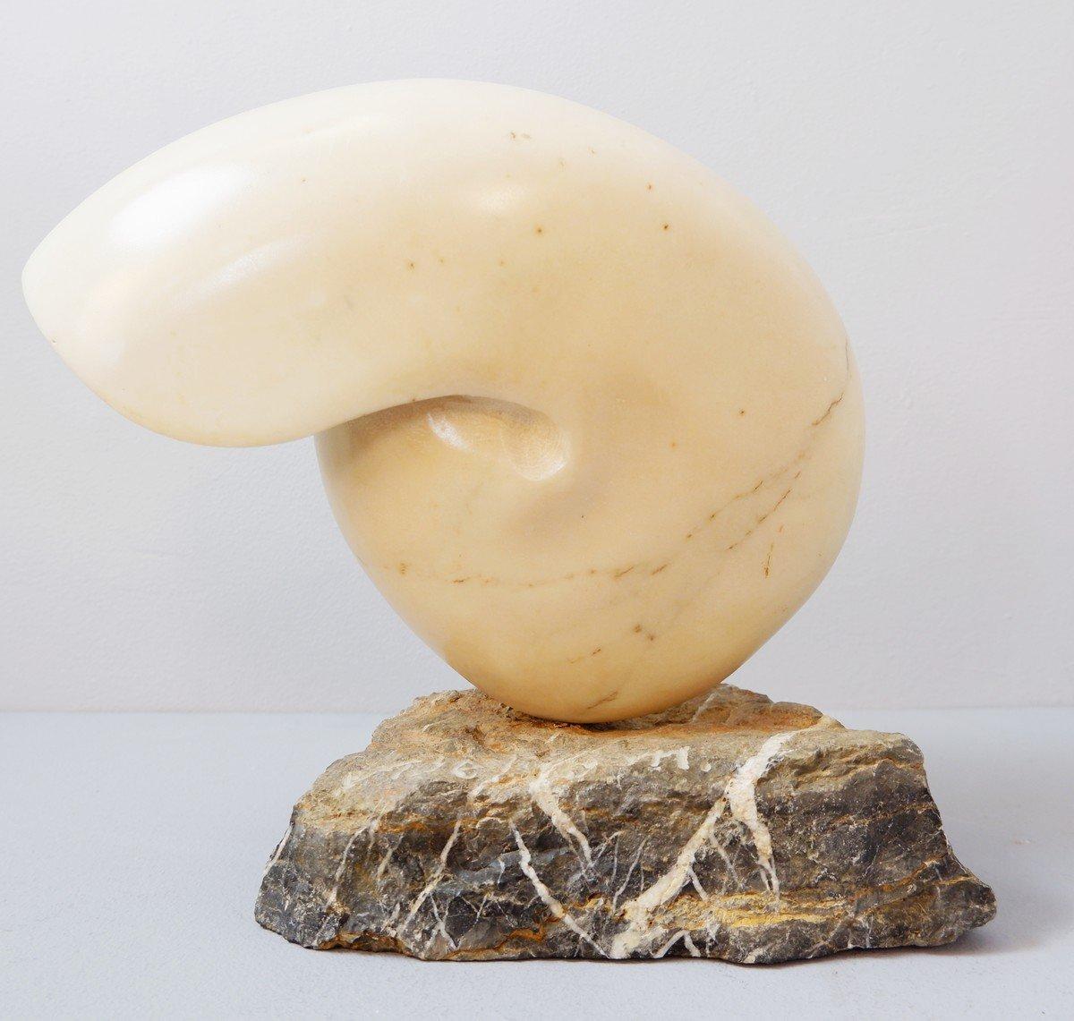 Sculpture Coquillage Nautilus Marbre - Signée