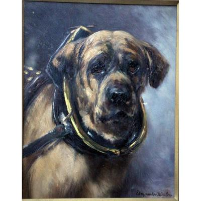 Edmond Van Der Meulen portrait de chien