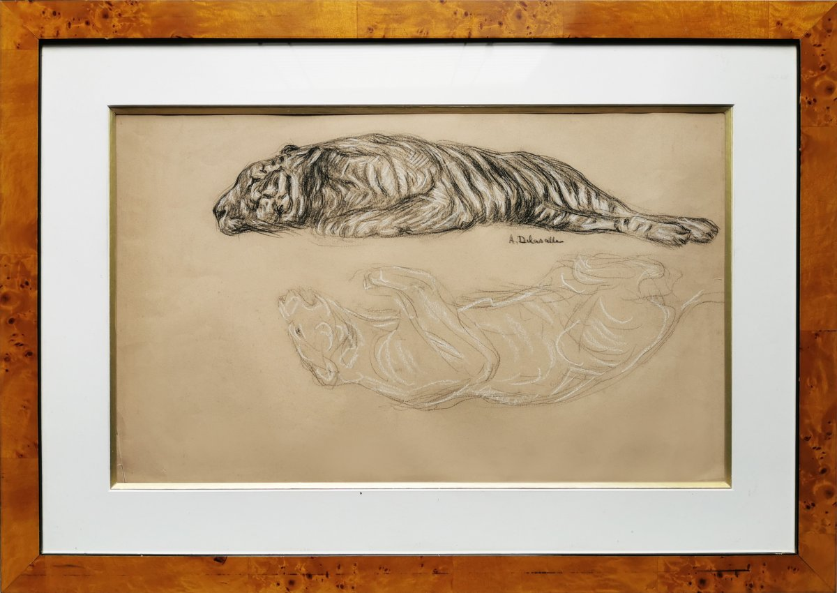 Angèle DELASALLE (1867-1939), Félin en miroir, Dessin au fusain et craie blanche, signé