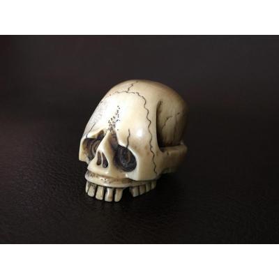 Vanité en ivoire XIXe, crâne humain réaliste, curiosa, cabinet de curiosités
