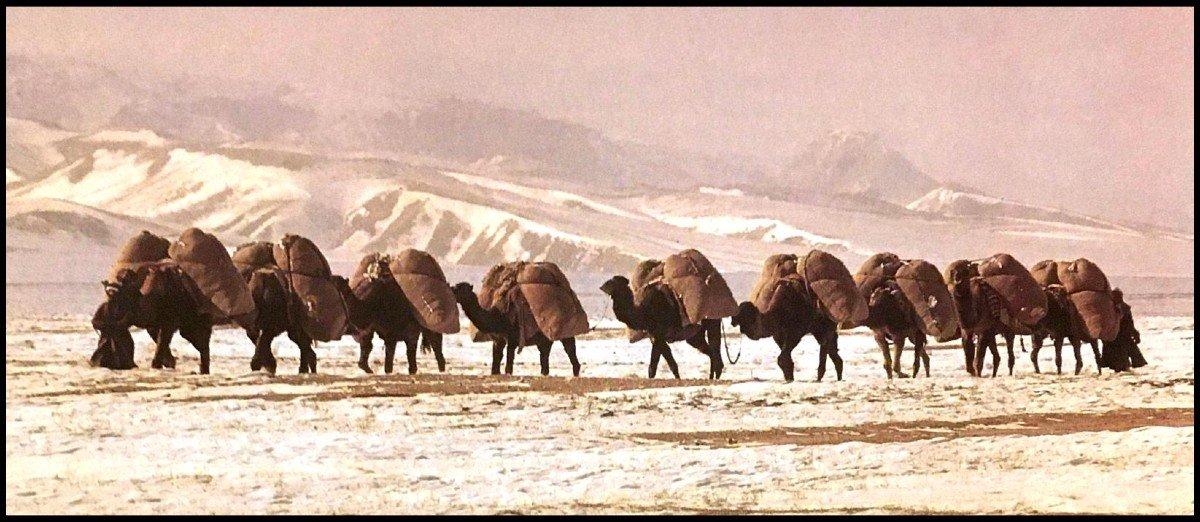 Théière-bouilloire, Perse, Asie centrale, cuivre au repoussé, XIXème siècle-photo-7