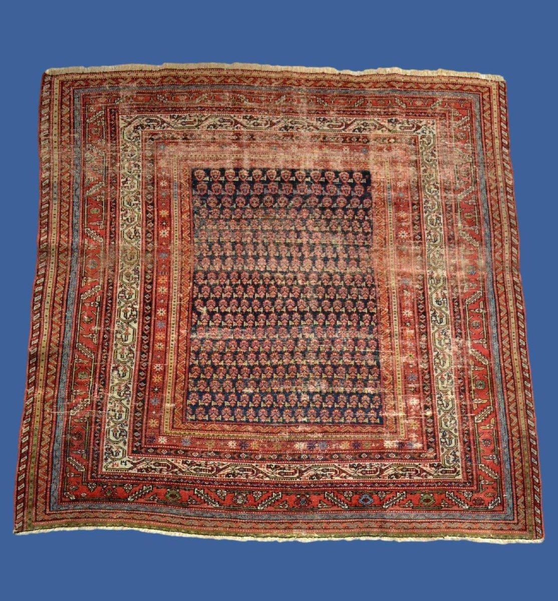 Tapis Afshar ancien, 177 cm x 178 cm, Iran, laine nouée main, fin du XIXème siècle-photo-6
