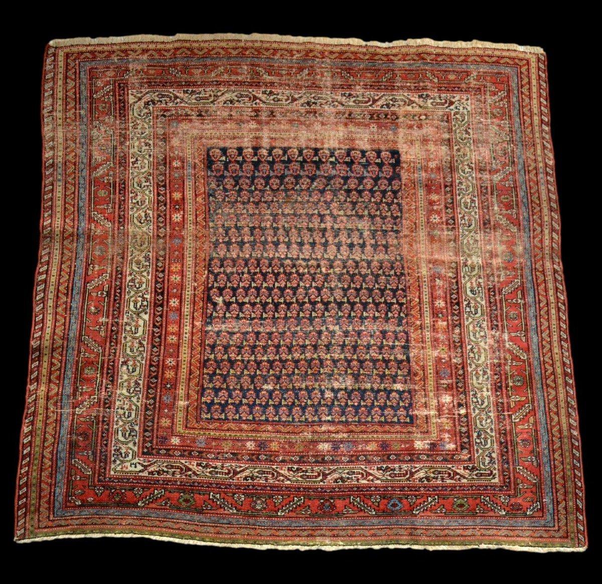 Tapis Afshar ancien, 177 cm x 178 cm, Iran, laine nouée main, fin du XIXème siècle