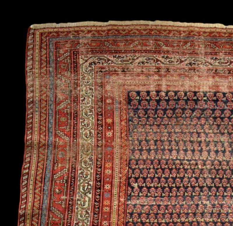 Tapis Afshar ancien, 177 cm x 178 cm, Iran, laine nouée main, fin du XIXème siècle-photo-3