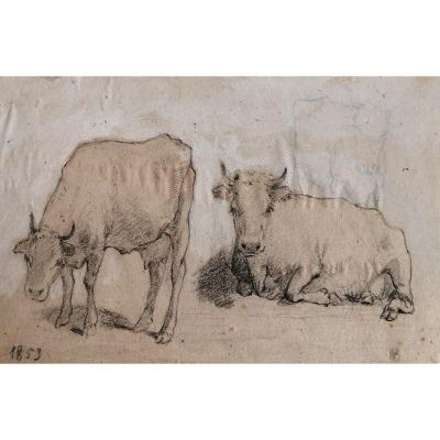 Drawing The Cows By François Simon (1818-1896)