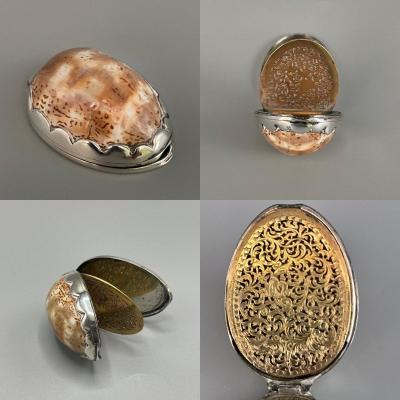 Silver And Natural Shell Dressing