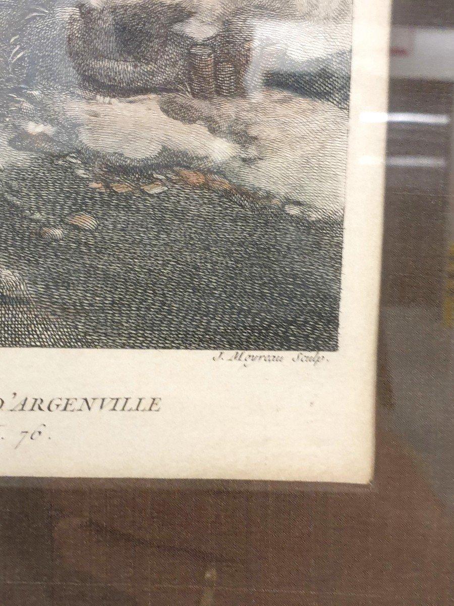 Gravure Couleurs XVIIIe Philips Wouwerman 58 X 66 Cm-photo-3