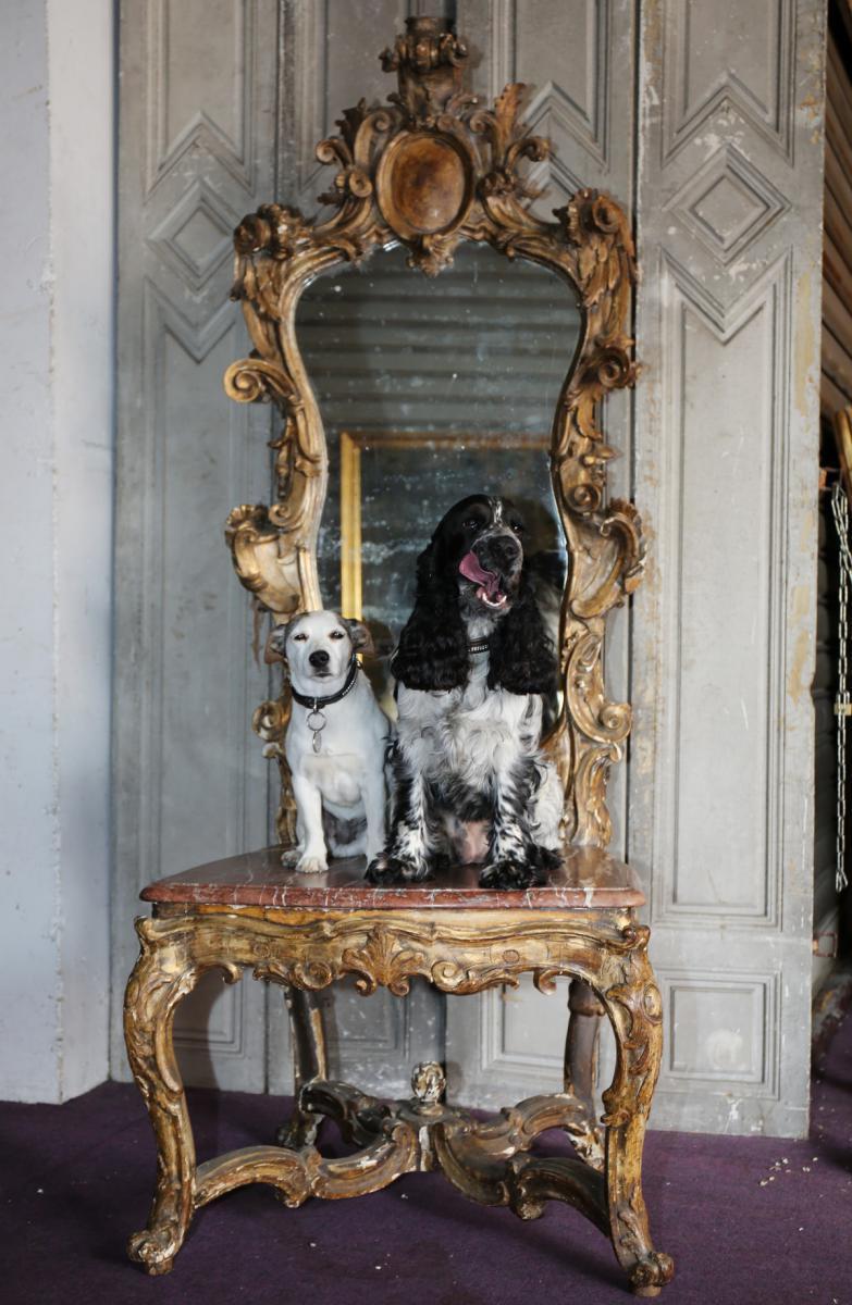 Chaise d'Aparat Transformée époque XVIII