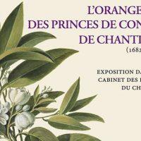 Orangerie des princes de Condé à Chantilly (1682-1799)
